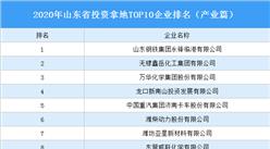 产业地产投资情报:2020年山东省投资拿地TOP10企业排名(产业篇)