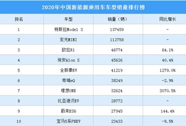 2020年中国新能源乘用车销量排行榜(TOP10)