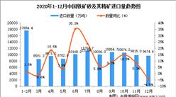 2020年12月中国铁矿砂及其精矿进口数据统计分析