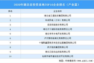 产业地产投资情报:2020年湖北省投资拿地TOP10企业排名(产业篇)