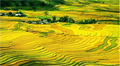 """农业丰则基础强!""""十四五""""京津冀地区农业产业发展思路分析(图)"""