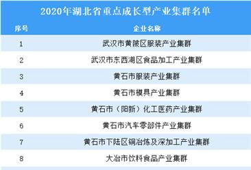 2020年湖北省重点成长型产业集群名单(附名单)