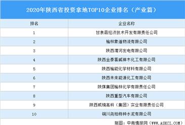 产业地产投资情报:2020年陕西省投资拿地TOP10企业排名(产业篇)