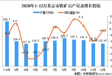 2020年12月北京市铁矿石产量数据统计分析