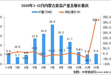 2020年12月内蒙古原盐产量数据统计分析