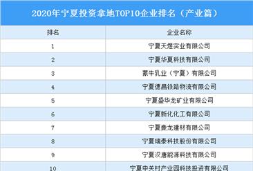 产业地产投资情报:2020年宁夏投资拿地TOP10企业排名(产业篇)