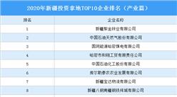 产业地产投资情报:2020年新疆投资拿地TOP10企业排名(产业篇)