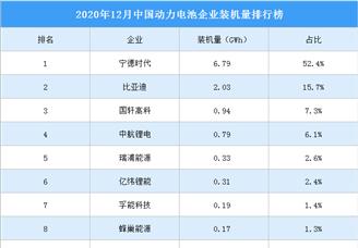 2020年12月中国动力电池企业装机量排行榜