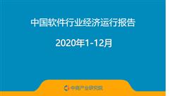 2020年1-12月中国软件行业经济运行报告(附全文)