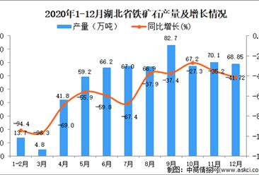 2020年12月湖北省铁矿石产量数据统计分析