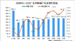 2020年12月广东省粗钢数据统计分析
