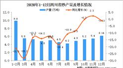 2020年12月四川省纱产量据统计分析 