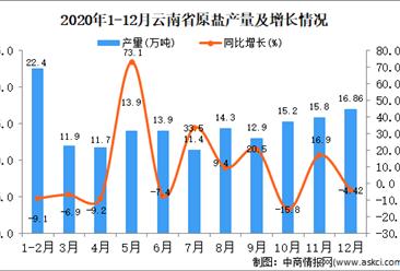 2020年12月云南省原盐产量据统计分析