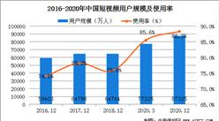 短视频用户迅速增长 2020年我国短视频用户规模为8.73亿(图)