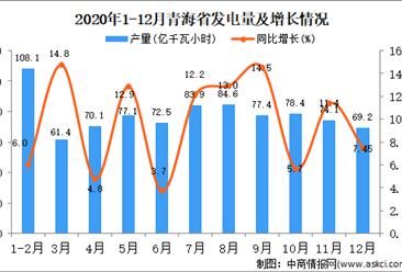 2020年12月青海省发电量据统计分析 
