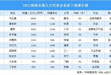 2021胡润全国人大代表企业家十强排行榜