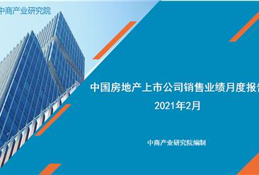 2021年2月中国房地产行业经济运行月度报告(完整版)