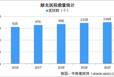 2020年湖北医院增加20家 执业(助理)医师增加0.57万人(图)