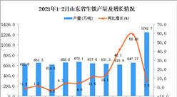2021年1-2月山东省生铁产量数据统计分析