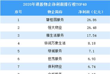 2020年港股物业企业净利润排行榜TOP40