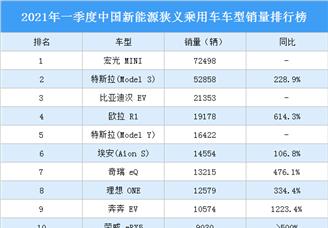 2021年一季度中国新能源乘用车车型销量排行榜(图)