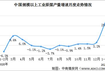 2021年1-2月份能源生产情况:发电量同比增长19.5%(图)