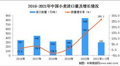 2021年1-3月中国小麦进口数据统计分析