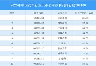 2020年中国汽车行业上市公司净利润排行榜TOP100(附榜单)