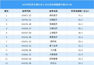 2020年中国医药生物行业上市公司净利润排行榜TOP100