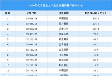 2020年中国化工行业上市公司净利润排行榜TOP100