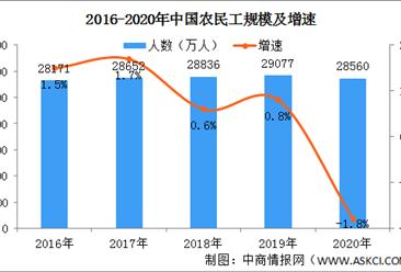 2020年全国农民工大数据统计:总量减少517万人 月均收入增长2.8%(图)