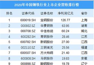2020年中国钢铁行业上市企业净利润排行榜