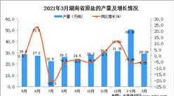 2021年3月湖南省原鹽產量數據統計分析