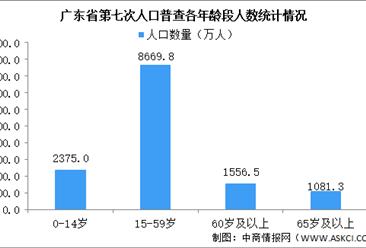 广东省第七次人口普查数据:劳动力人口8669.8万人 广州深圳占比最大(图)
