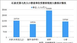 石家庄第七次人口普查结果:常住人口增加111万 60岁及以上人口占比18%(图)