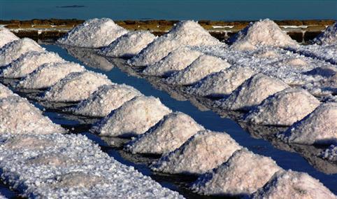 2021年5月中国原盐产量数据统计分析