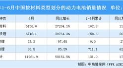 2021年1-6月中���恿��池�N量【情�r:磷酸�F��池�N售你他同比增�L260%(�D)