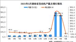 2021年5月湖南省发动机产量数据统计分析
