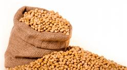 2021年6月中国大豆进口数据统计分析