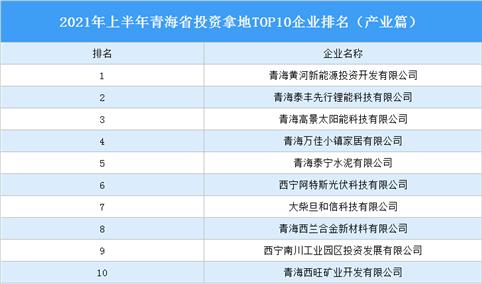产业地产投资情报:2021年上半年青海省投资拿地top10企业排名(产业篇)