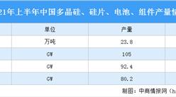 2021年上半年中國光伏產業運行情況:光伏組件產品同比增長50.5%(圖)