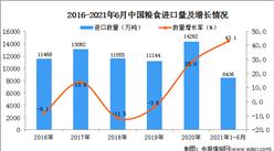 2021年1-6月中國糧食進口數據統計分析