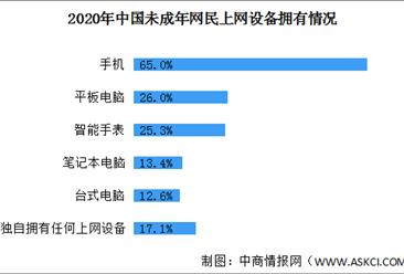 82.9%未成年网民拥有属于自己的上网设备 2021年中国电子产品市场前景分析(图)