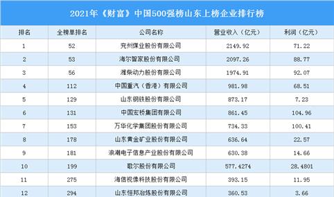 2021年《财富》中国500强榜山东上榜企业排行榜