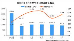 2021年7月中国天然气进口数据统计分析