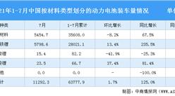 2021年1-7月中國動力電池裝車量情況:三元電池裝車量同比增長124.3%(圖)
