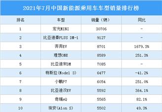 2021年7月中国新能源乘用车车型销量排行榜(附榜单)