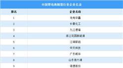 2021年中國鋰電池銅箔行業大數據分析(附企業名錄)