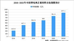 全球将现50%锂需求缺口:2021年中国锂材料市场现状及发展趋势预测分析