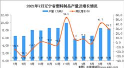 2021年7月辽宁省塑料制品产量数据统计分析